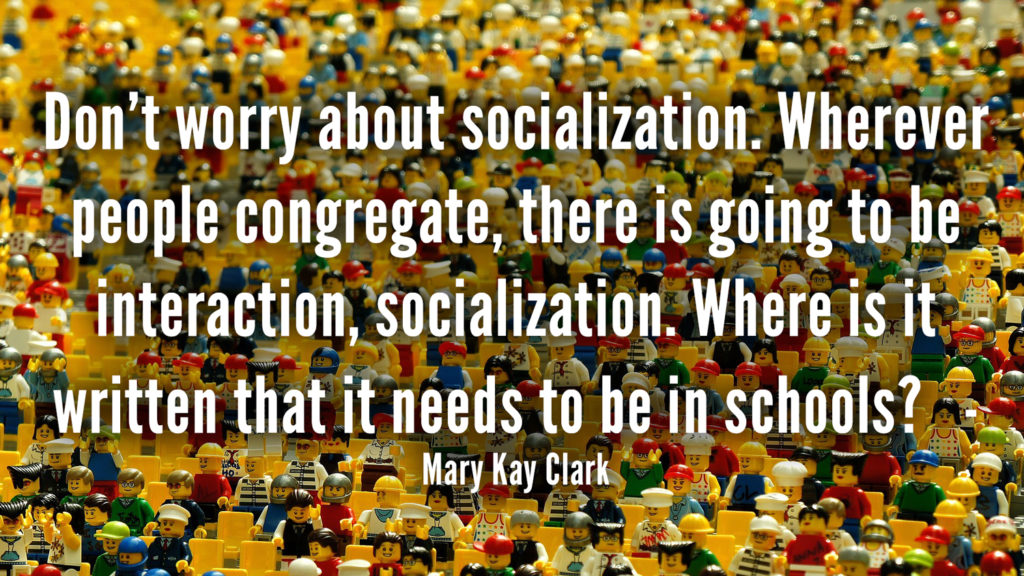 Don't worry about socialization